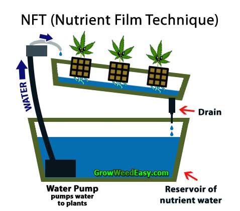 Nft Hydro Diagram Blog De Fran 231 Ois Maillet